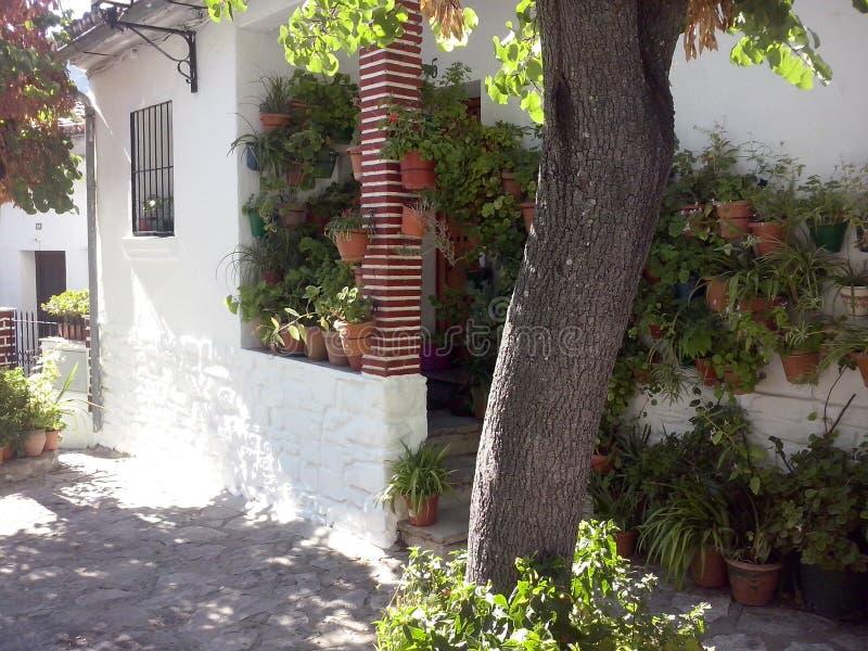 露台andaluz 库存照片