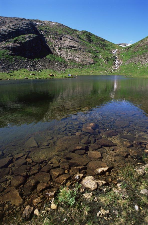 露营地威胁距离湖 免版税图库摄影