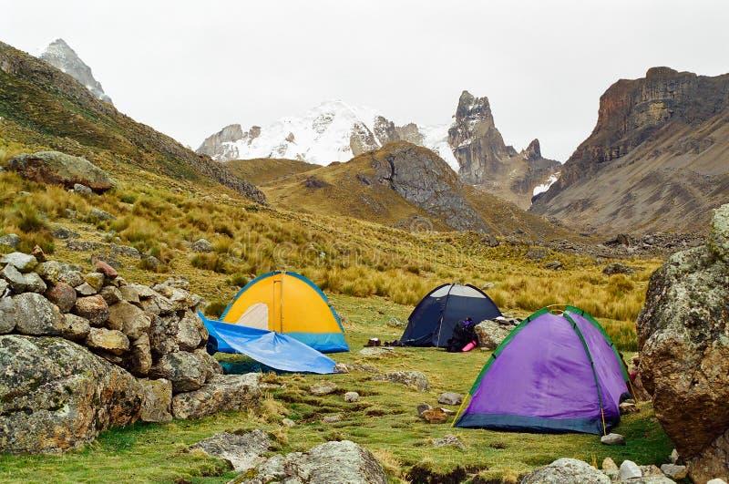 露营地huayhuash秘鲁牛拉车旅行 免版税图库摄影