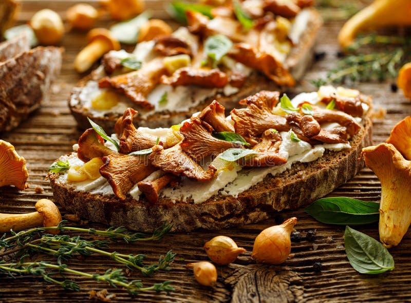 露面的三明治,蘑菇三明治用与黄蘑菇蘑菇的加法的酸面团,乳脂状山羊乳干酪和新鲜 免版税库存照片