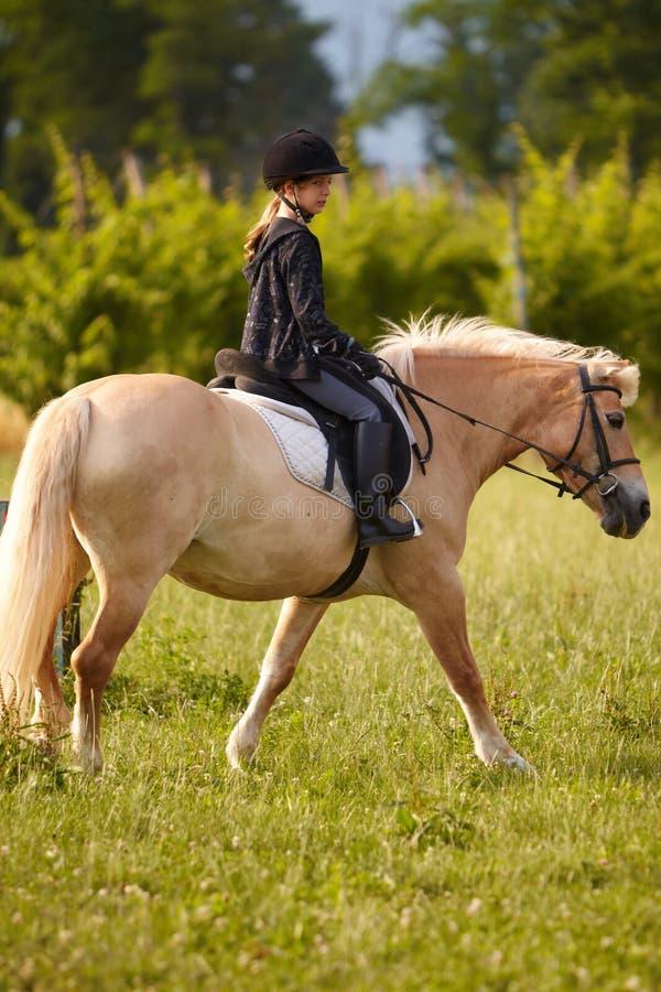 青少年白肤金发的小马的乘驾 免版税库存图片