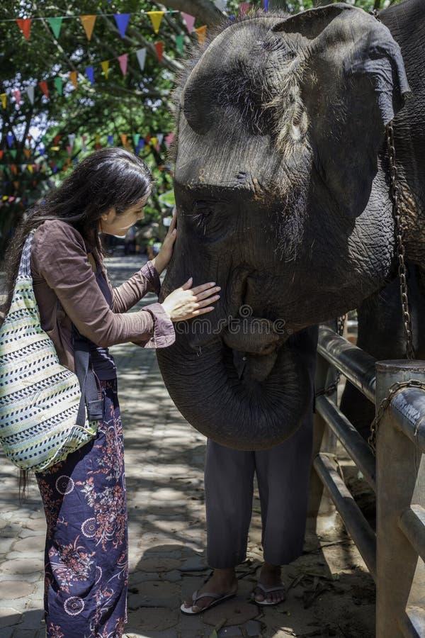 青少年的女孩游人谈话与婴孩大象在泰国 免版税库存图片