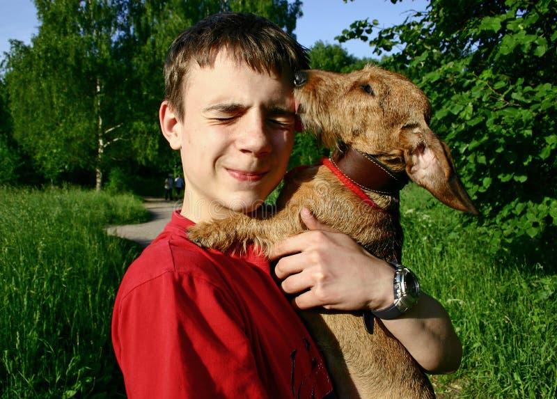 青少年的狗 免版税库存照片