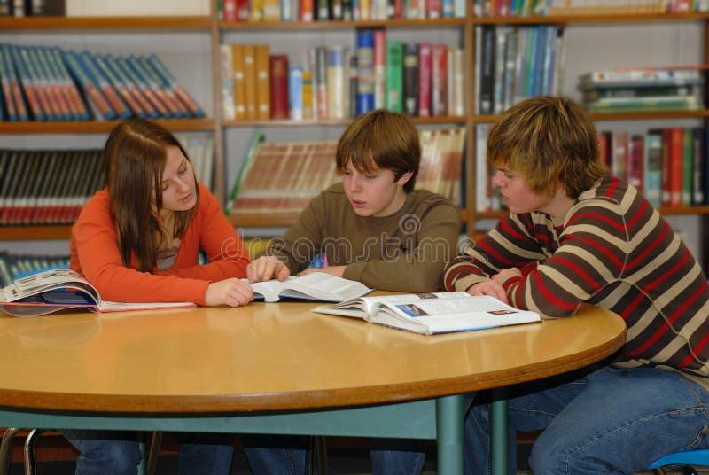 青少年聚合式图书馆的研究 免版税库存照片