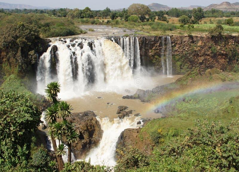 青尼罗河秋天,巴赫达尔,埃塞俄比亚 库存图片