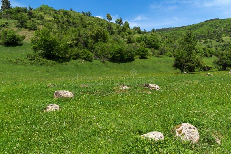 青山春天风景临近Fotinovo村庄在Rhodopes山,保加利亚的 免版税库存照片