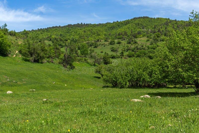 青山春天风景临近Fotinovo村庄在Rhodopes山,保加利亚的 免版税图库摄影