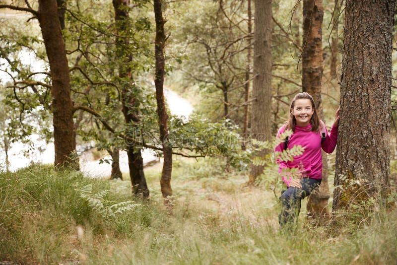 青春期前的女孩在森林,进行下去的高草里站立倾斜反对一棵树 库存照片
