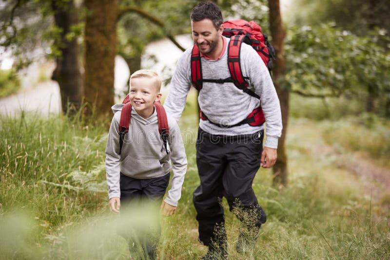 青春期前的步行在森林,选择聚焦里的男孩和他的父亲 库存照片