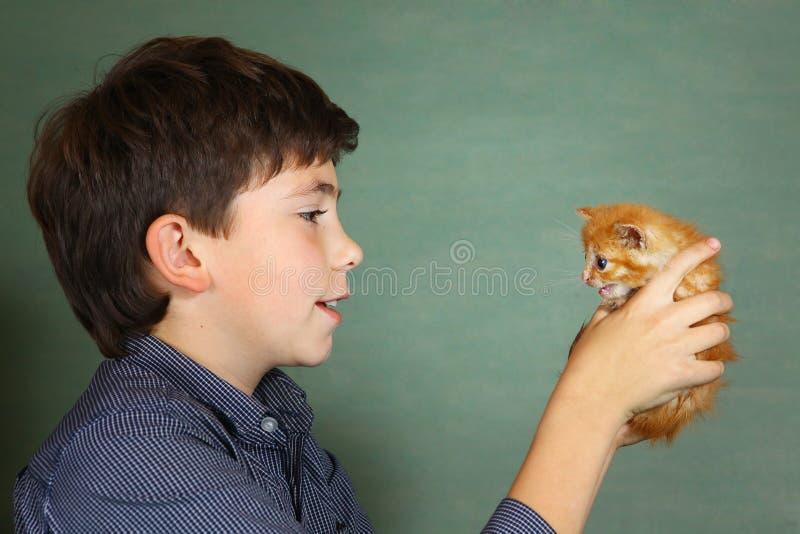 青春期前的英俊的男孩举行小的红色小猫 库存照片