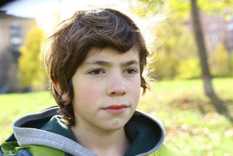 青春期前的英俊的男孩室外秋天画象 库存照片