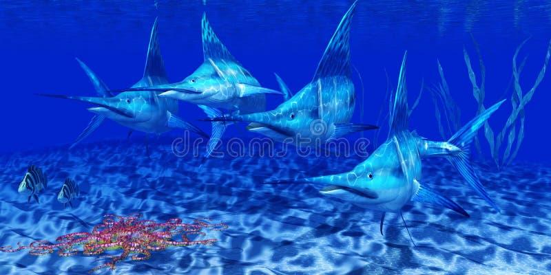 青枪鱼掠食性动物 库存照片