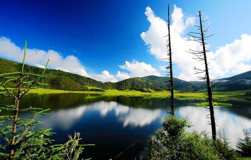 青海西藏高原的pudacuo国家公园 免版税库存照片
