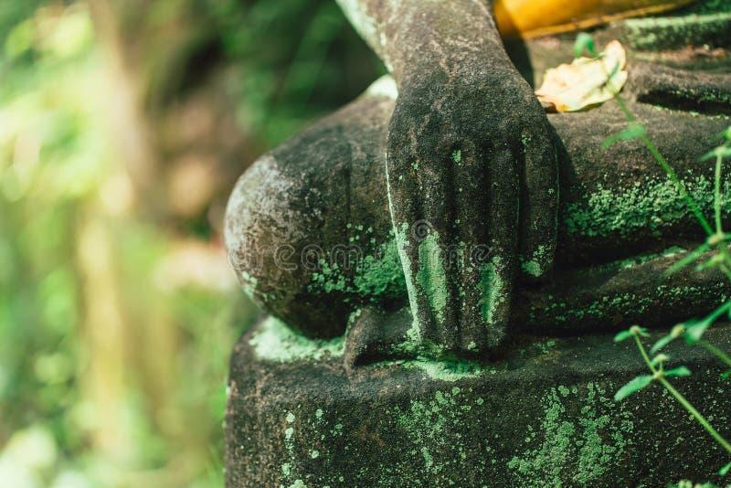 青苔石菩萨手在Wat的U-Mong Chiangmai泰国森林里 免版税图库摄影