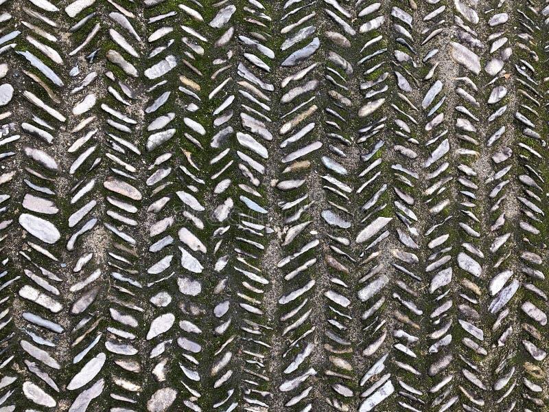 青苔铺路石 纹理在中国庭院里 库存照片