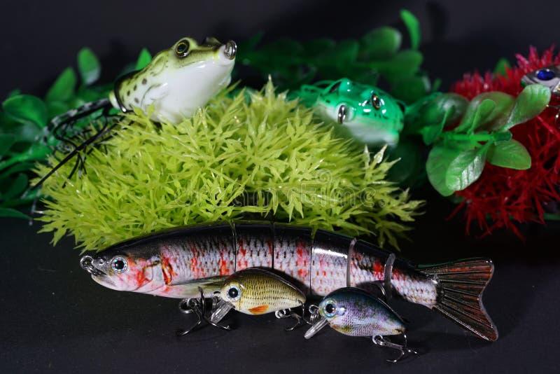 青蛙做了与锋利的勾子的塑料是非常合适的 库存图片