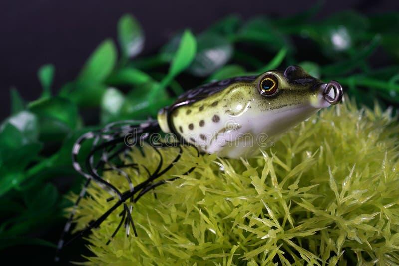 青蛙做了与锋利的勾子的塑料 库存图片