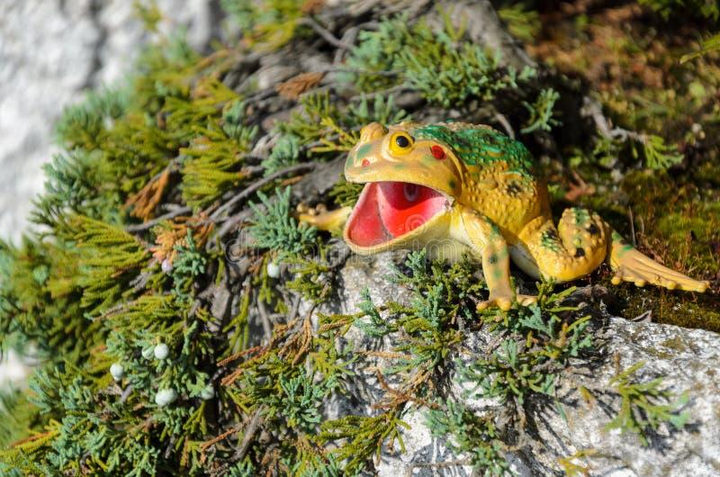 青蛙形象在庭院似乎呕吐 库存照片