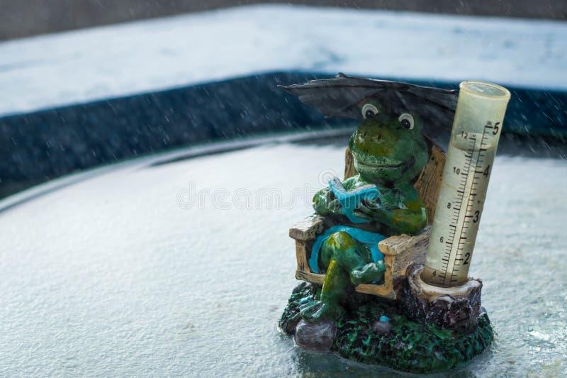 青蛙雨量计 免版税库存照片