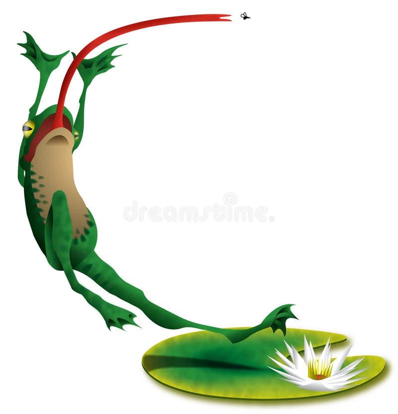 青蛙飞跃 库存照片