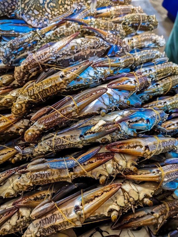 青蟹在鱼市上 免版税库存图片