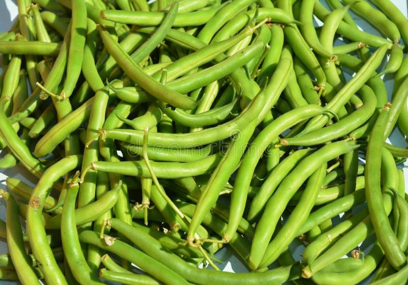 青豆砂锅、亦称菜豆或者云豆背景 素食主义者食物 库存图片
