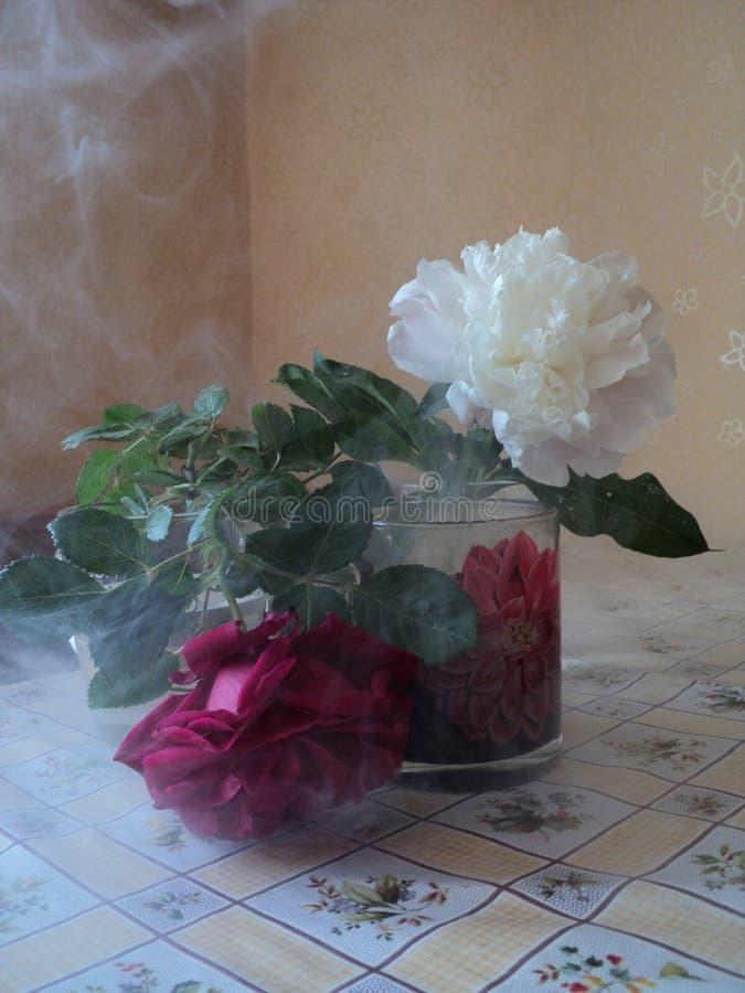 静物画在厨房开花轻的烟和百叶窗 免版税库存照片