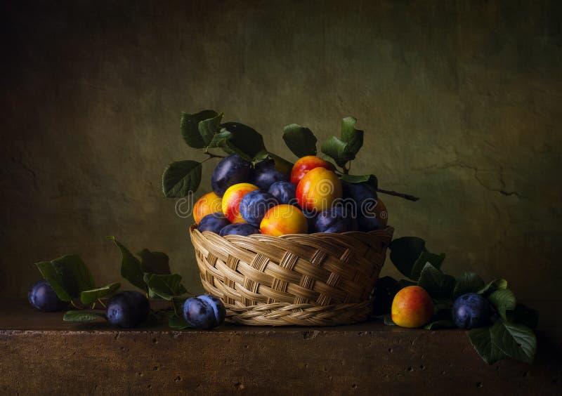 静物画用油桃和李子 免版税库存图片