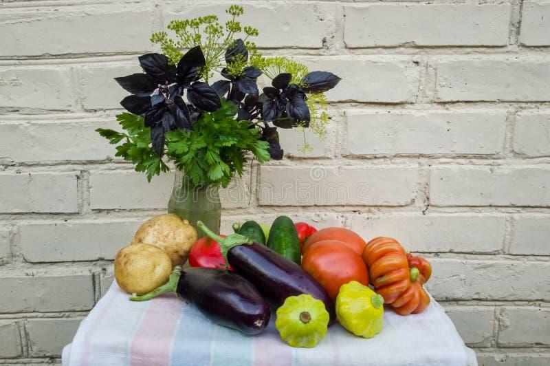 静物画-自然菜和香料 自己的耕种生态产品  免版税库存照片