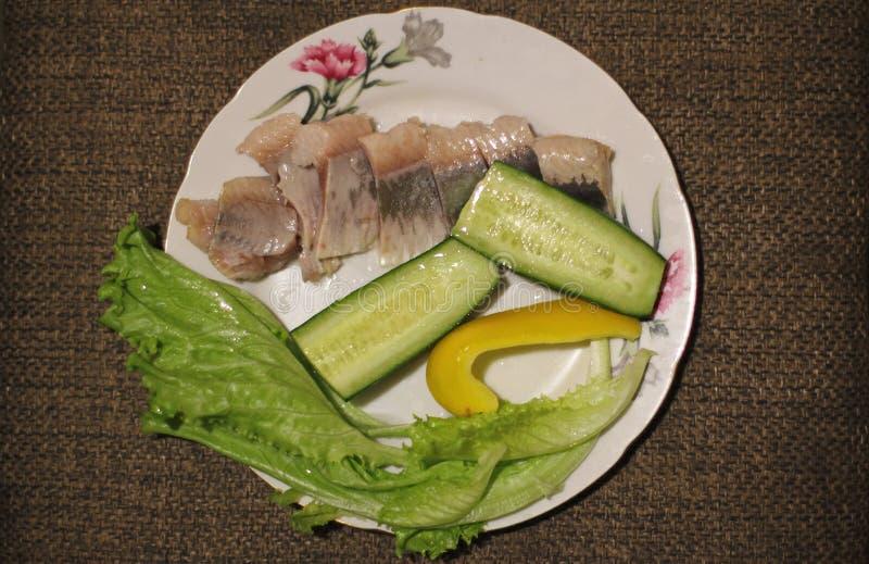 静物画 食物 鲱鱼,沙拉,蕃茄,黄瓜 库存照片