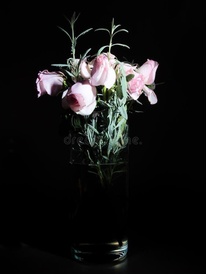 静物画玫瑰在黑暗中 库存图片