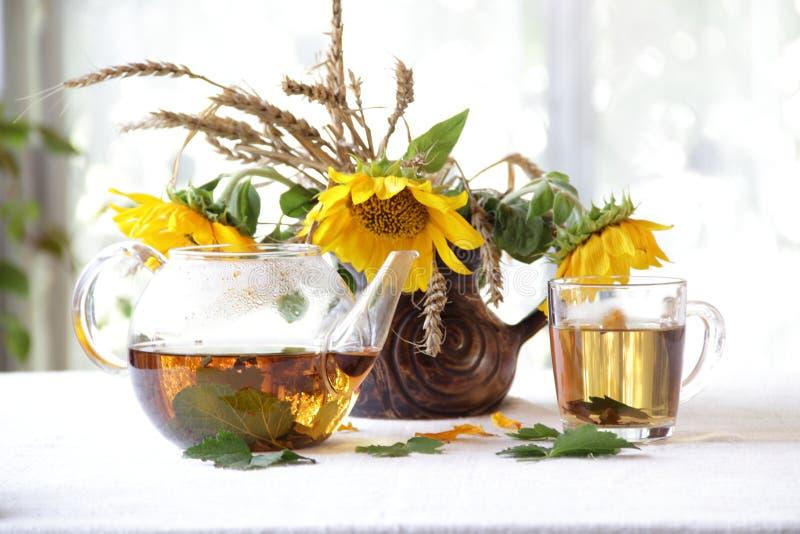 静物画用在一个透明茶壶的茶和太阳花束  图库摄影