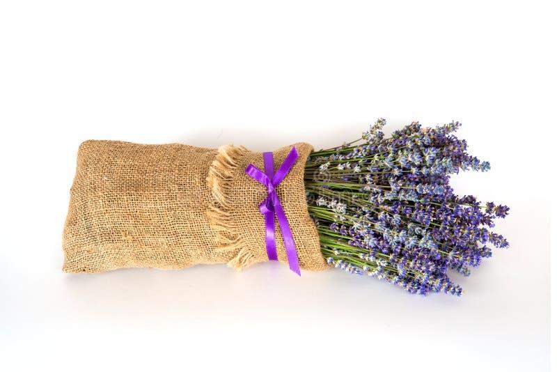 静物画用在白色背景的淡紫色 免版税库存照片