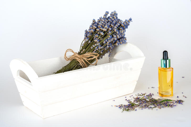 静物画用在白色背景的淡紫色 库存图片
