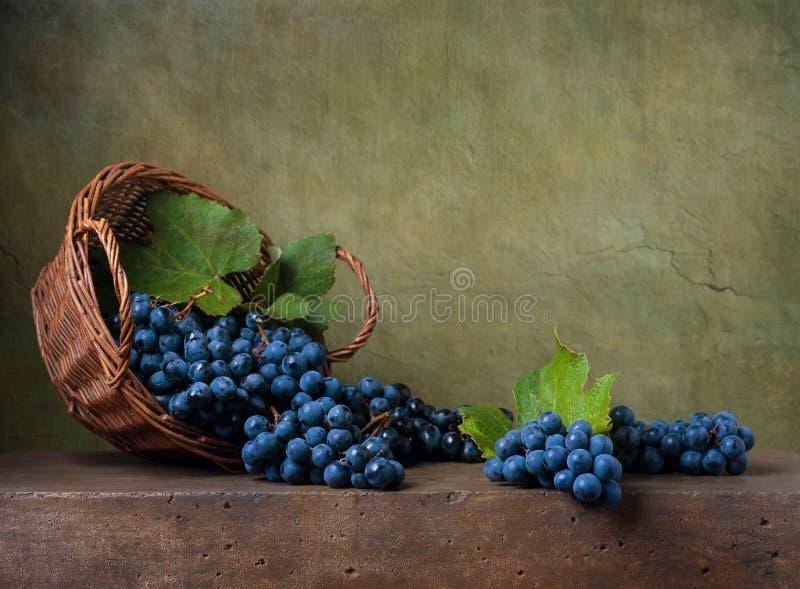 静物画用在篮子的葡萄 免版税库存照片