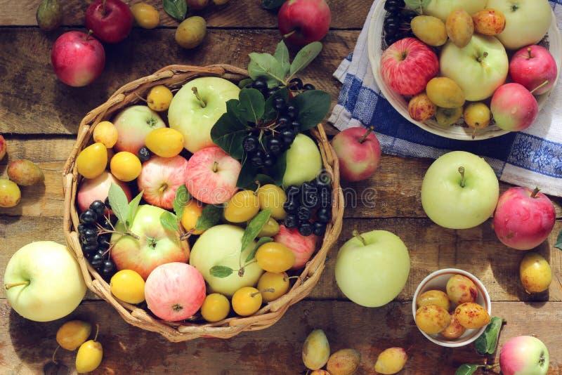 静物画用苹果和李子,顶视图 库存图片