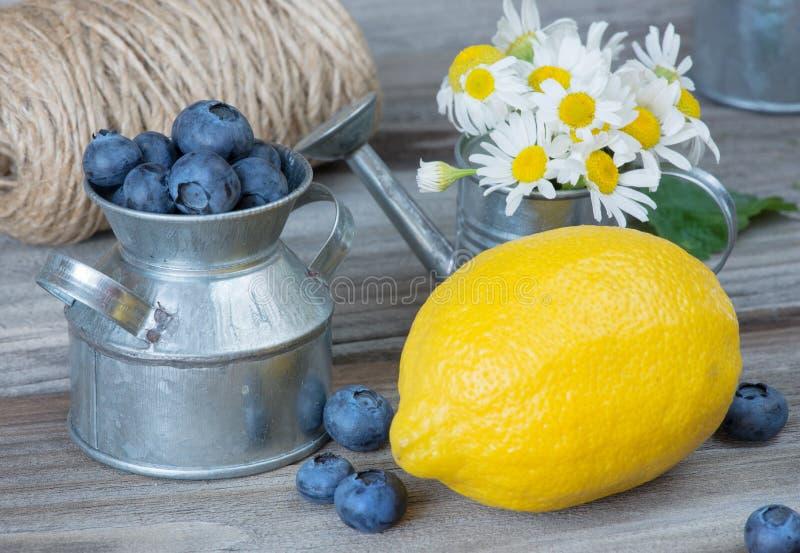 静物画用蓝莓、柠檬和春黄菊 免版税库存照片