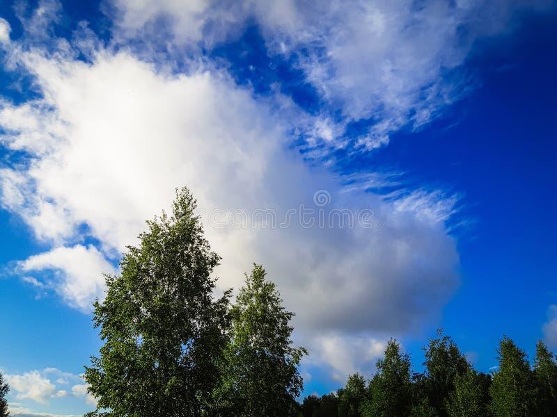 非常与云彩的美丽的天空蔚蓝 免版税库存照片