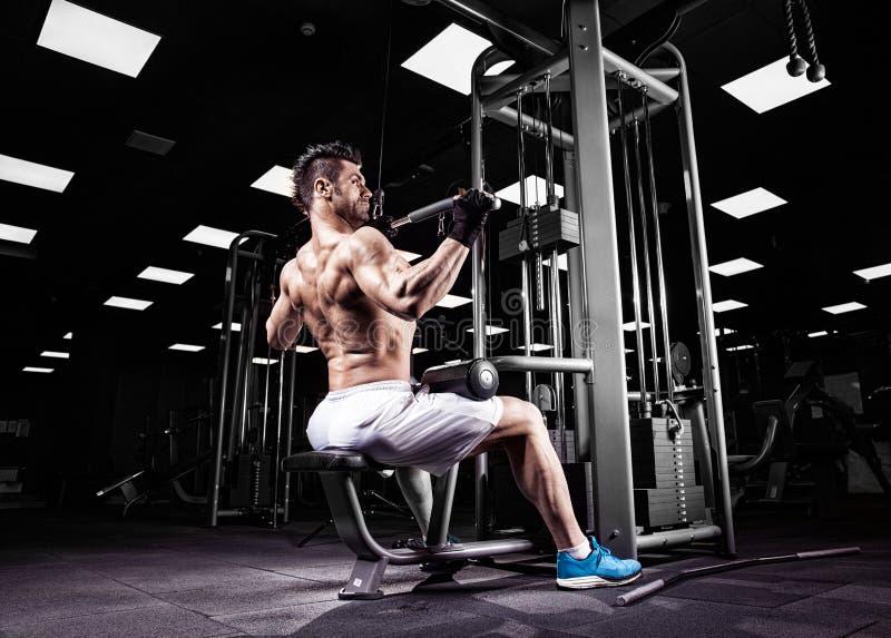 Download 非常力量运动人爱好健美者 库存图片. 图片 包括有 肌组织, 肌肉, 黑暗, 健身, 面包, 保镖, 爱好健美者 - 72366213