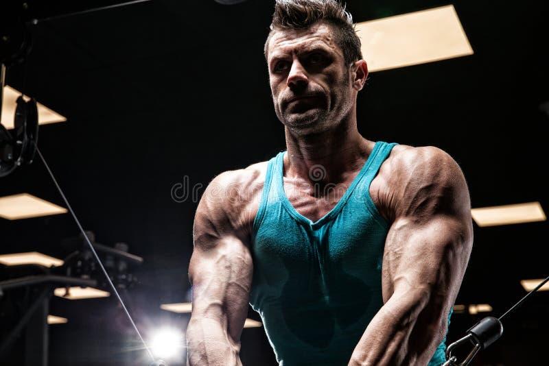 Download 非常力量运动人爱好健美者 库存图片. 图片 包括有 强大, 教练, 吵嘴, 实际, 面包, beauvoir - 72367077