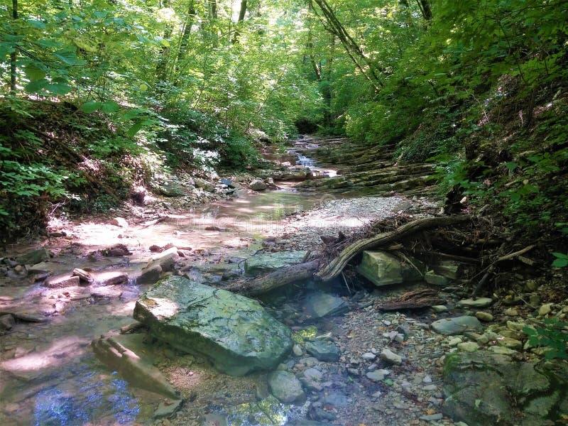 非常在山的美丽如画的小河 免版税库存照片