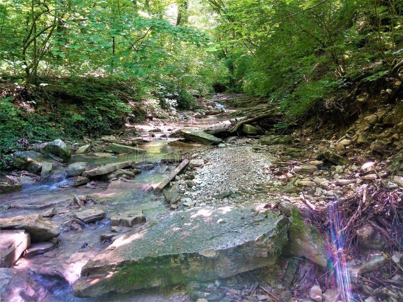 非常在山的美丽如画的小河 免版税图库摄影