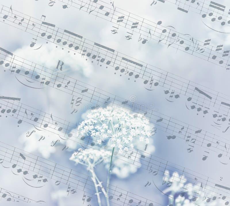 非常在老纸背景的柔和的轻的花在音符的 图库摄影