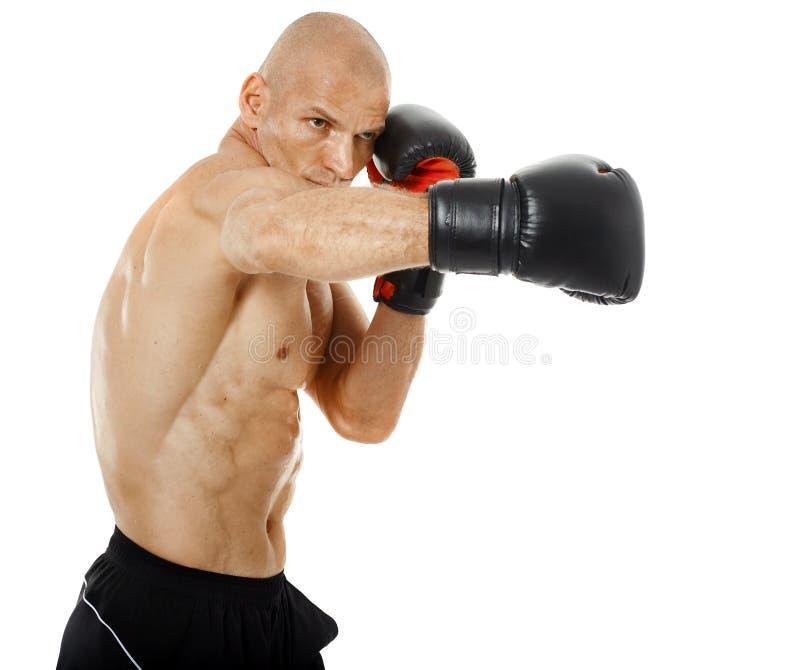 非常猛击在白色的适合的kickboxer 图库摄影