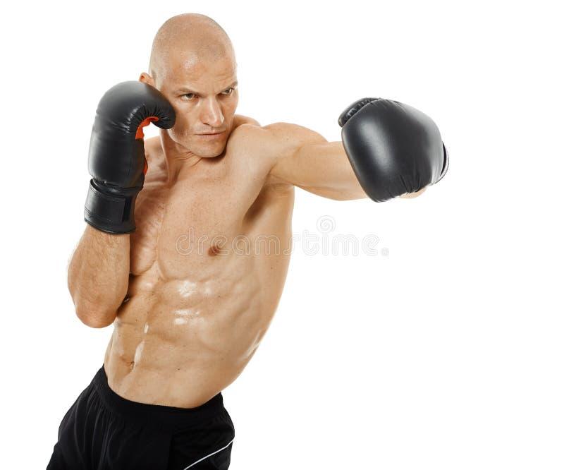 非常猛击在白色的适合的kickboxer 库存照片