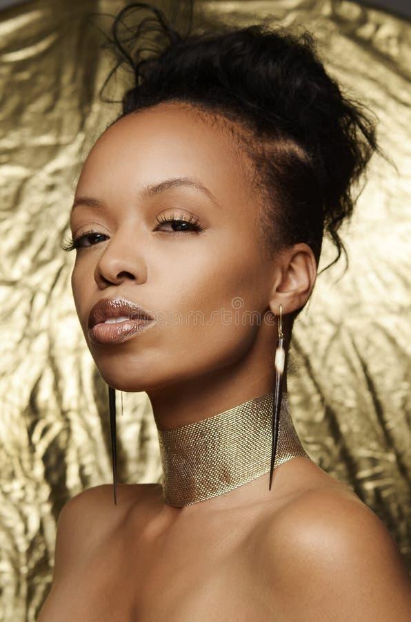非常美丽的年轻非裔美国人的妇女 库存照片