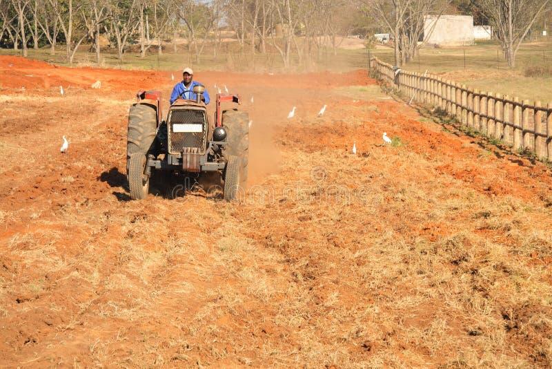 非洲人耕种的拖拉机 免版税库存图片