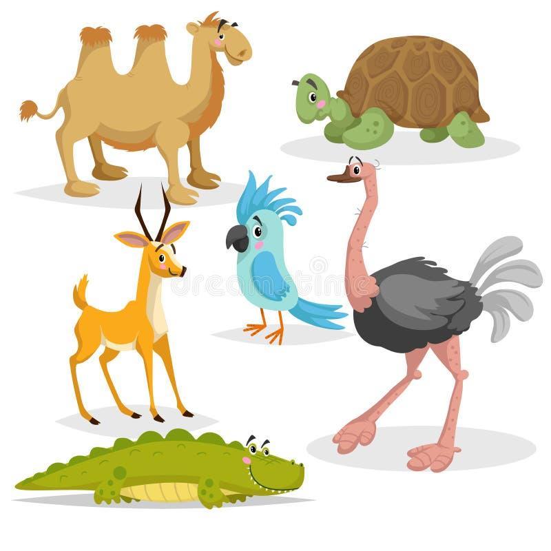 非洲动物动画片集合 Gazzelle anthelope、鳄鱼、双峰驼、大非洲乌龟、鹦鹉和驼鸟 动物园野生生物c 向量例证