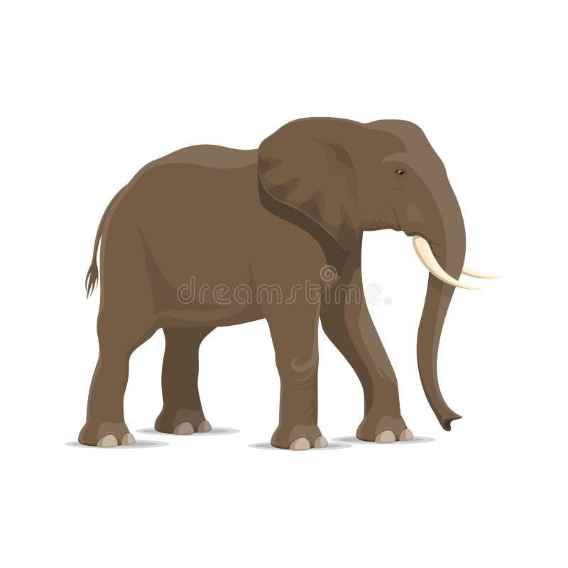 非洲大草原哺乳动物大象动物象  皇族释放例证