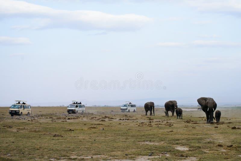 非洲大象家庭和徒步旅行队吉普 免版税库存图片